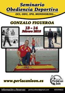 Seminario-Gonzalo-Figueroaweb