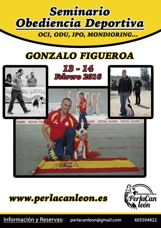 Seminario Obediencia Deportiva – Gonzalo Figueroa