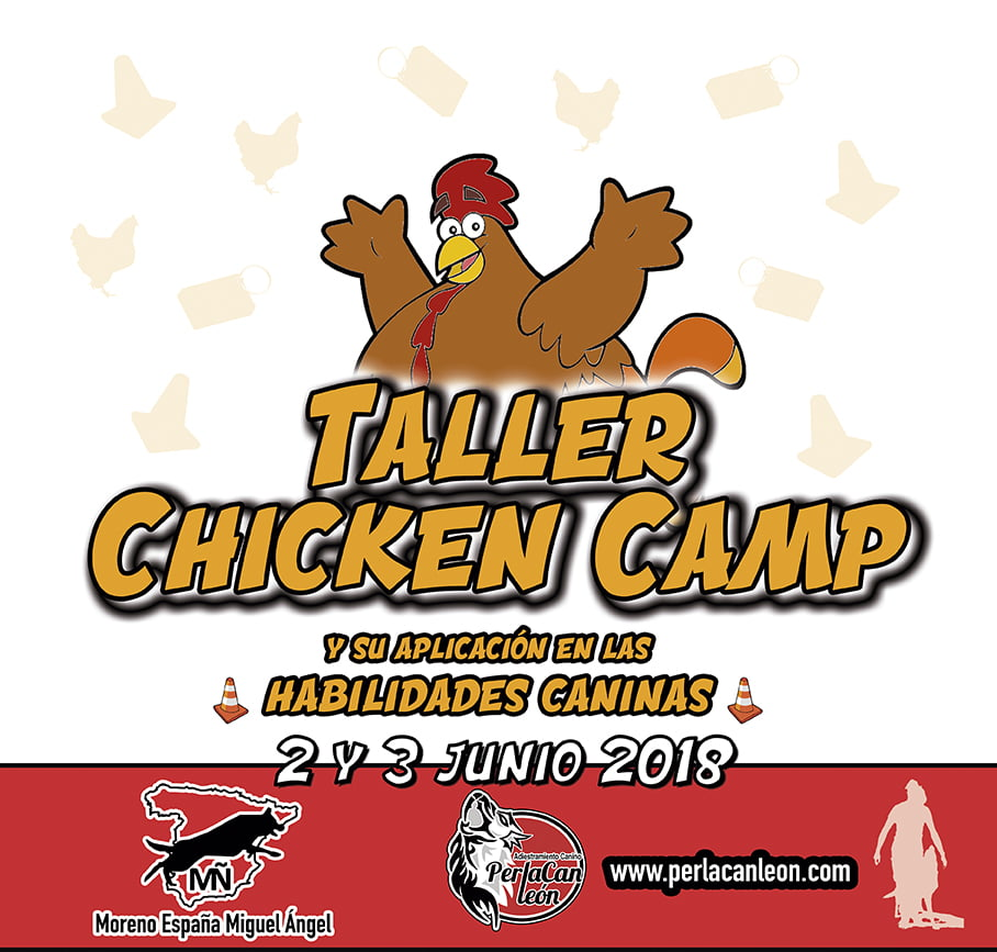 CHICKEN CAMP LEÓN